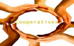 47th national cooperatives day today