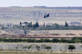 Turkish army kills 55 IS members in Syria: reports