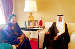 Speaker urges Qatar to invest in power sector