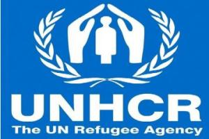 UNHCR promises continued support in tackling Rohingya crisis