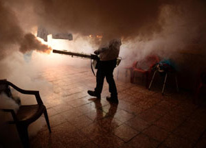 Dominican Republic confirms 10 cases of Zika virus