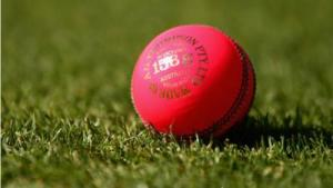 Cricket: Australia to play pink-ball Tests against SAfrica, Pakistan – report